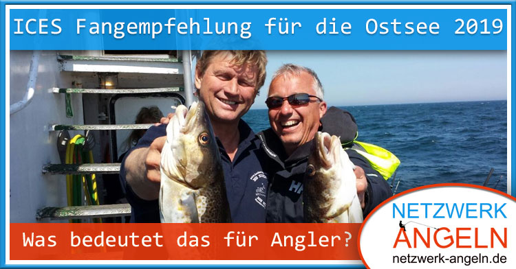 Ices Fangempfehlung Ostsee 2019