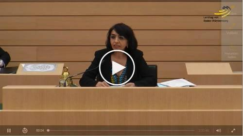 video landtag bw