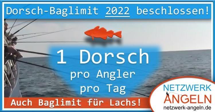 teaser2 dorsch baglimit 2022