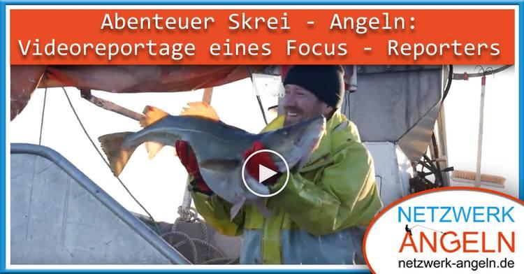 750 teaser skrei video focus