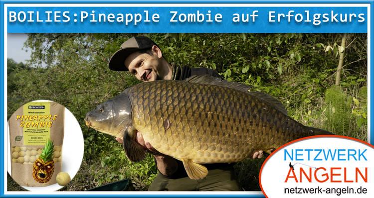 Boilies: Pineapple Zombie auf Erfolgskurs